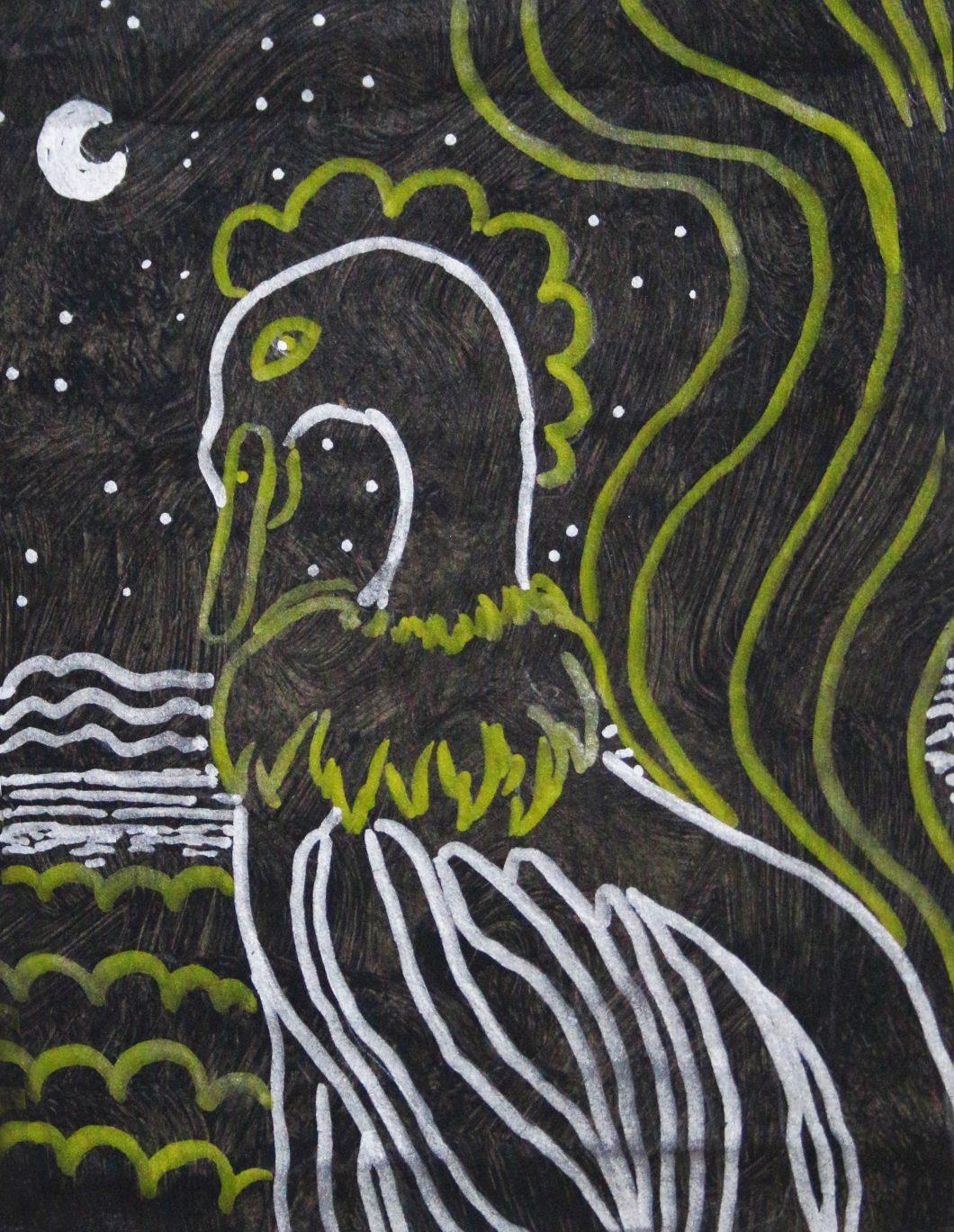 Gallo Nocturno